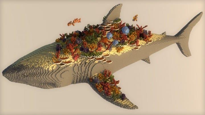 Lebendiges Korallenriff | Massiver Hai